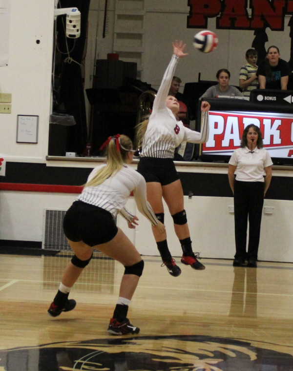 Photo courtesy Kim Flemmer. The Lady Panthers were victorious over Fromberg last Thursday defeating the Falcons in three games.