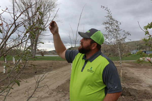 Laurel Tree Board member and employee of River Ridge Landscaping Aaron Christianson hopes this year's Arbor Day celebration will educate students and residents about the importance of caring for trees and the environment.