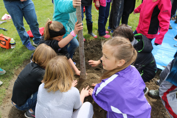 Fourth-grade students get their hands dirty planting a tree in Murray Park Tuesday, May 2, in celebration of Arbor Day. The students spent the morning learning about forestry, weather and the environment before they enjoyed a barbecue lunch and tree planting. This Arbor Day marks Laurel's 11th year as a Tree City, USA. Joshua Stoychoff presented city officials with the award. Laurel Tree Board members Dale Ahrens, Aaron Christiansen and LuAnne Engh organized the Arbor Day event.
