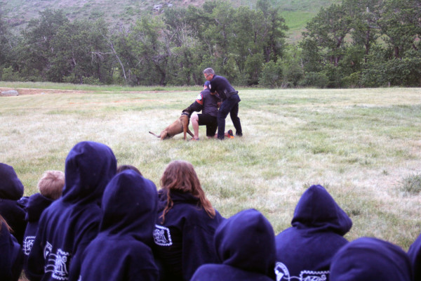 """Laurel campers cheer on Kooko and Billings K-9 handler David Firebaugh as they subdue Volunteers of America Montana Division Director Nick """"the perp"""" Little during demo day at Camp POSTCARD."""