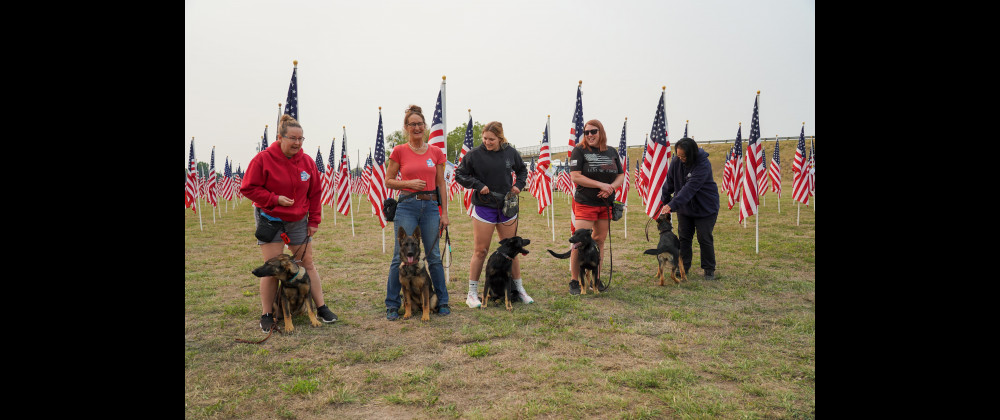 Representatives from Dog Tag Buddies, a community program that pairs service dogs with disabled veterans, were at the Healing Field last week with five German Shepherd pups for socialization training. From the left are DeeDe Baker, Executive Director; Bonnie Lusby, Trainer; Abigail Harper, Administrative support for DTB; Kati Grove, Operations Director; Amanda Sugita, Volunteer.