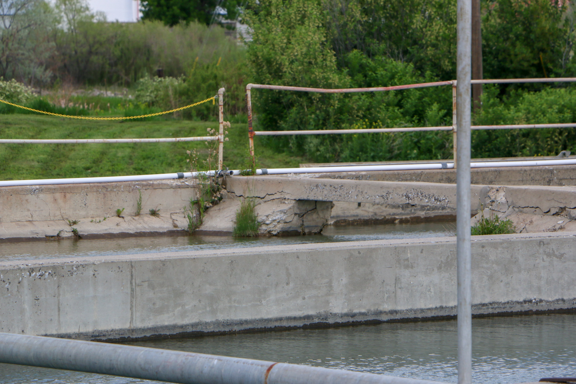 Some of the erosion and damage of the old sediment basins at the City Water Treatment Plant.
